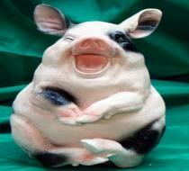 Свинка-хохотушка, большая