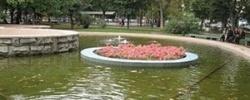 Клумба на воде – украшение для декоративного водоема