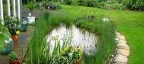Декоративный пруд – вид искусственного водоема